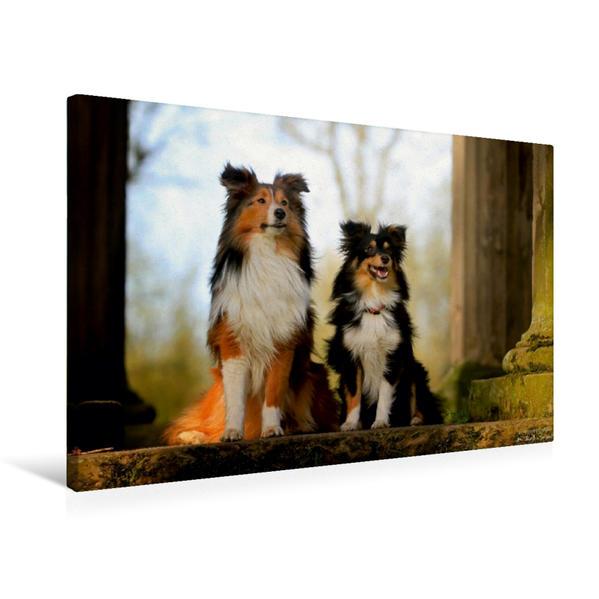 Premium Textil-Leinwand 75 cm x 50 cm quer, Erste Sonnenstrahlen | Wandbild, Bild auf Keilrahmen, Fertigbild auf echter Leinwand, Leinwanddruck - Coverbild