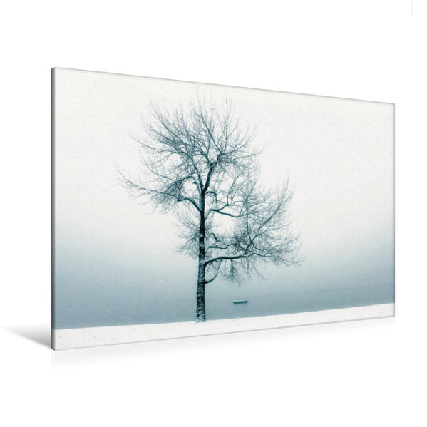 Premium Textil-Leinwand 120 cm x 80 cm quer, Ein Motiv aus dem Kalender Winterbäume | Wandbild, Bild auf Keilrahmen, Fertigbild auf echter Leinwand, Leinwanddruck - Coverbild