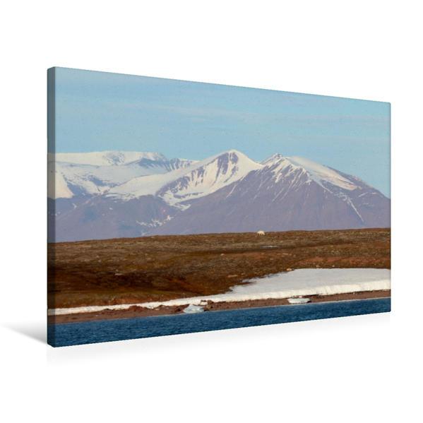 Premium Textil-Leinwand 75 cm x 50 cm quer, Eisbär - Einsamer Wanderer in der Arktis | Wandbild, Bild auf Keilrahmen, Fertigbild auf echter Leinwand, Leinwanddruck - Coverbild