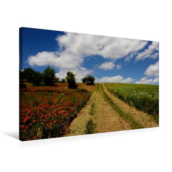 Premium Textil-Leinwand 75 cm x 50 cm quer, Ein Motiv aus dem Kalender Roter Mohn, bunte Wiesen | Wandbild, Bild auf Keilrahmen, Fertigbild auf echter Leinwand, Leinwanddruck - Coverbild