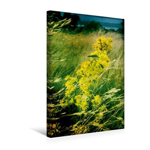 Premium Textil-Leinwand 30 cm x 45 cm hoch, Wenn der Sommer geht (2) | Wandbild, Bild auf Keilrahmen, Fertigbild auf echter Leinwand, Leinwanddruck - Coverbild