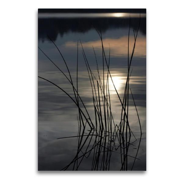 Premium Textil-Leinwand 60 cm x 90 cm hoch, Ein Motiv aus dem Kalender Stille - Natur im Winterschlaf | Wandbild, Bild auf Keilrahmen, Fertigbild auf echter Leinwand, Leinwanddruck - Coverbild