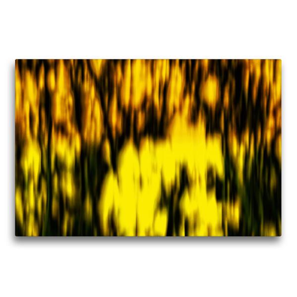 Premium Textil-Leinwand 75 cm x 50 cm quer, Ein Motiv aus dem Kalender RapsARTig | Wandbild, Bild auf Keilrahmen, Fertigbild auf echter Leinwand, Leinwanddruck - Coverbild