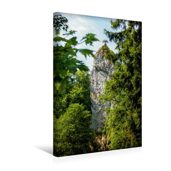 Premium Textil-Leinwand 30 cm x 45 cm hoch, Harz | Wandbild, Bild auf Keilrahmen, Fertigbild auf echter Leinwand, Leinwanddruck - Coverbild