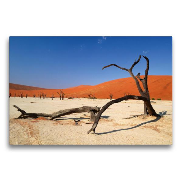 Premium Textil-Leinwand 75 cm x 50 cm quer, Tote Bäume im Deadvlei | Wandbild, Bild auf Keilrahmen, Fertigbild auf echter Leinwand, Leinwanddruck - Coverbild