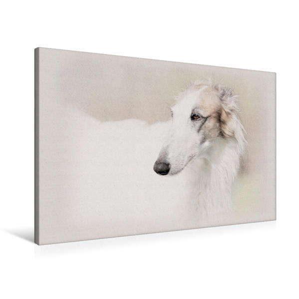 Premium Textil-Leinwand 90 cm x 60 cm quer, Ein Motiv aus dem Kalender Windhunde 2017 | Wandbild, Bild auf Keilrahmen, Fertigbild auf echter Leinwand, Leinwanddruck - Coverbild