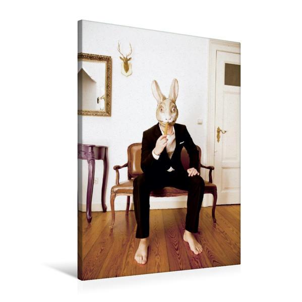 Premium Textil-Leinwand 60 cm x 90 cm hoch, Ein Motiv aus dem Kalender MASKERADE | Wandbild, Bild auf Keilrahmen, Fertigbild auf echter Leinwand, Leinwanddruck - Coverbild