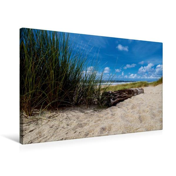 Premium Textil-Leinwand 75 cm x 50 cm quer, Strandhafer am Strand | Wandbild, Bild auf Keilrahmen, Fertigbild auf echter Leinwand, Leinwanddruck - Coverbild