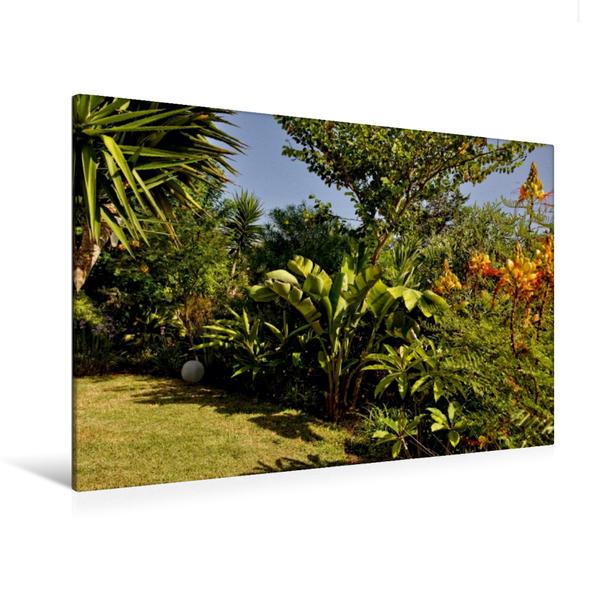 Premium Textil-Leinwand 120 cm x 80 cm quer, Ein Motiv aus dem Kalender SALENTO ein Streifzug durch versteckte Gärten | Wandbild, Bild auf Keilrahmen, Fertigbild auf echter Leinwand, Leinwanddruck - Coverbild