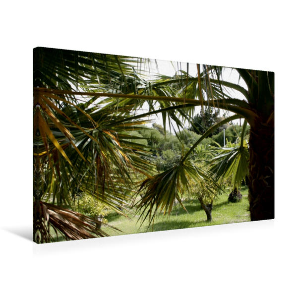 Premium Textil-Leinwand 75 cm x 50 cm quer, Ein Motiv aus dem Kalender Test kalender SPP | Wandbild, Bild auf Keilrahmen, Fertigbild auf echter Leinwand, Leinwanddruck - Coverbild
