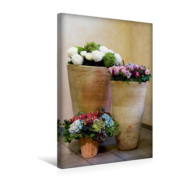 Premium Textil-Leinwand 30 cm x 45 cm hoch, mediteranes Trio | Wandbild, Bild auf Keilrahmen, Fertigbild auf echter Leinwand, Leinwanddruck - Coverbild