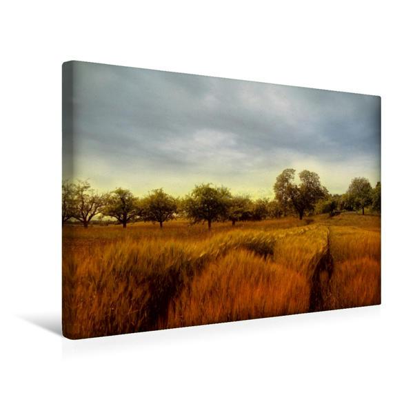 Premium Textil-Leinwand 45 cm x 30 cm quer, Landschaftsbild | Wandbild, Bild auf Keilrahmen, Fertigbild auf echter Leinwand, Leinwanddruck - Coverbild