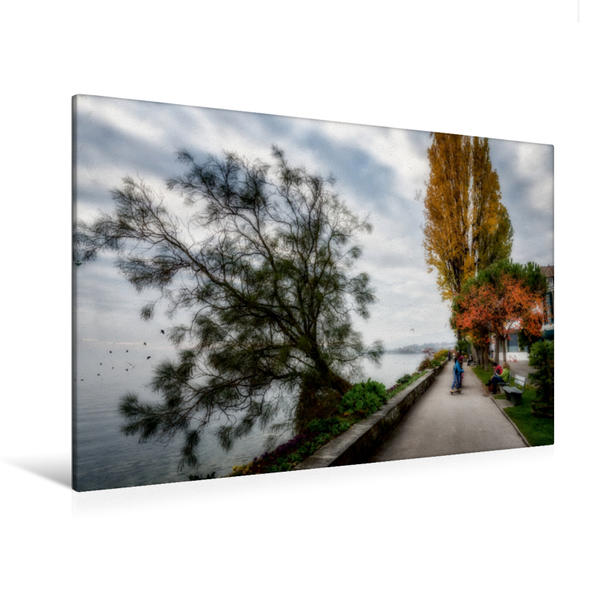 Premium Textil-Leinwand 120 cm x 80 cm quer, Der Spaziergang des Bordes des Sees | Wandbild, Bild auf Keilrahmen, Fertigbild auf echter Leinwand, Leinwanddruck - Coverbild