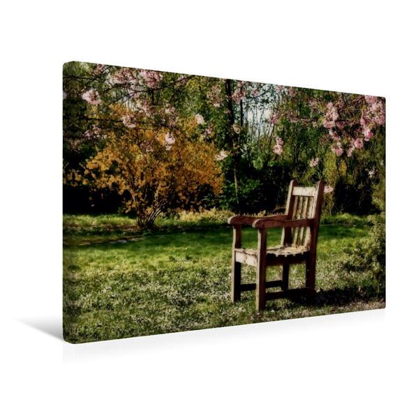 Premium Textil-Leinwand 45 cm x 30 cm quer, Auf die Frühlingssonne wartend | Wandbild, Bild auf Keilrahmen, Fertigbild auf echter Leinwand, Leinwanddruck - Coverbild