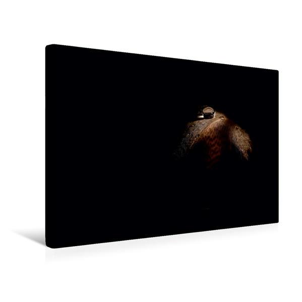 Premium Textil-Leinwand 45 cm x 30 cm quer, silence | Wandbild, Bild auf Keilrahmen, Fertigbild auf echter Leinwand, Leinwanddruck - Coverbild