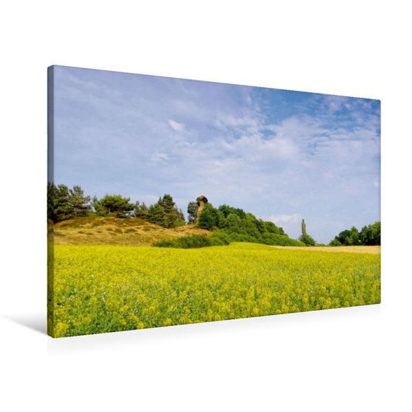 Premium Textil-Leinwand 90 cm x 60 cm quer, Frühling im Harz | Wandbild, Bild auf Keilrahmen, Fertigbild auf echter Leinwand, Leinwanddruck - Coverbild