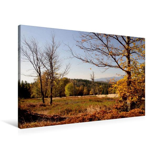 Premium Textil-Leinwand 90 cm x 60 cm quer, Morgensonne auf dem Weg zum Hirschenstein | Wandbild, Bild auf Keilrahmen, Fertigbild auf echter Leinwand, Leinwanddruck - Coverbild