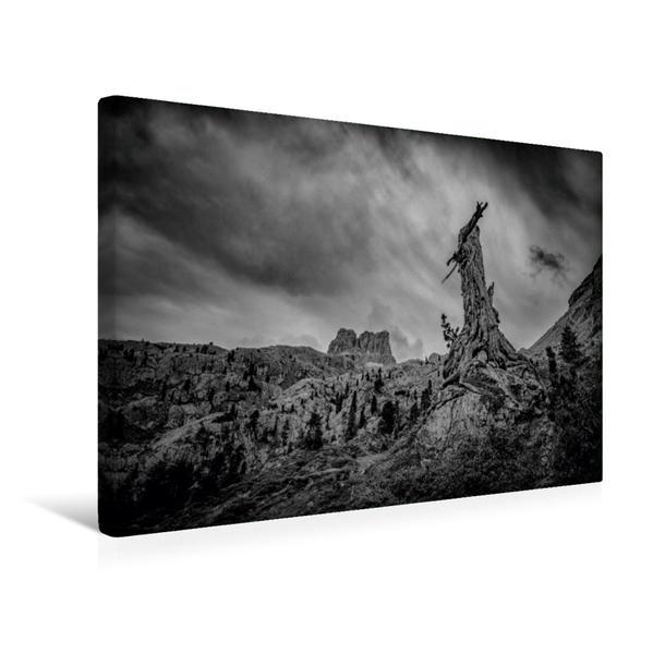 Premium Textil-Leinwand 45 cm x 30 cm quer, Dolomiten - Verwitterter Baum vor dem Sturm   Wandbild, Bild auf Keilrahmen, Fertigbild auf echter Leinwand, Leinwanddruck - Coverbild