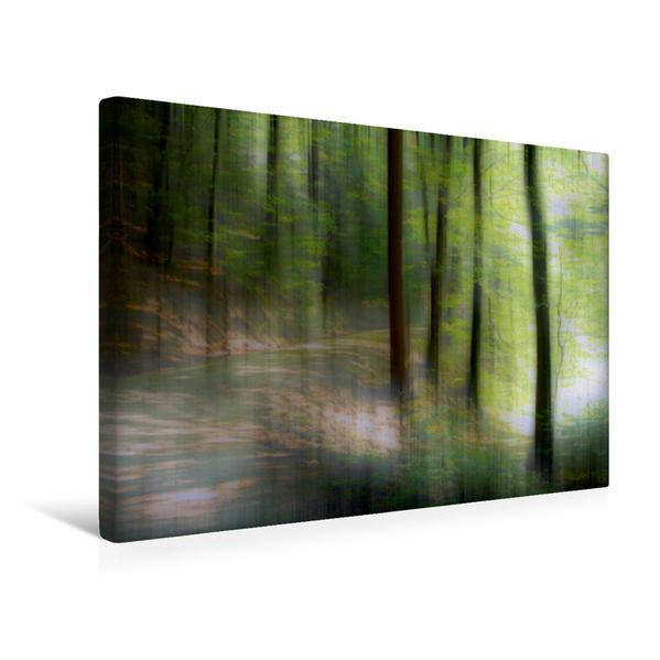 Premium Textil-Leinwand 45 cm x 30 cm quer, Ein Motiv aus dem Kalender WALDESLUST 2017 / CH-Version / Planer | Wandbild, Bild auf Keilrahmen, Fertigbild auf echter Leinwand, Leinwanddruck - Coverbild