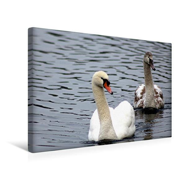 Premium Textil-Leinwand 45 cm x 30 cm quer, Vater und Sohn | Wandbild, Bild auf Keilrahmen, Fertigbild auf echter Leinwand, Leinwanddruck - Coverbild