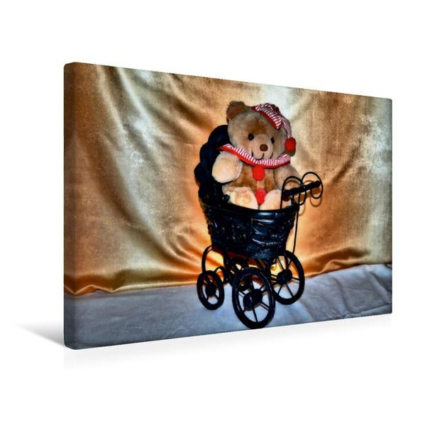 Premium Textil-Leinwand 45 cm x 30 cm quer, Baby Bär   Wandbild, Bild auf Keilrahmen, Fertigbild auf echter Leinwand, Leinwanddruck - Coverbild