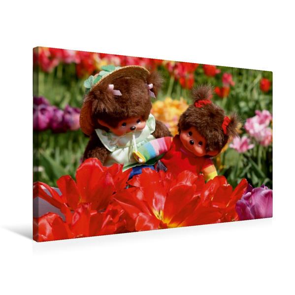 Premium Textil-Leinwand 75 cm x 50 cm quer, Ein Motiv aus dem Kalender Ein Jahr mit Monchichis   Wandbild, Bild auf Keilrahmen, Fertigbild auf echter Leinwand, Leinwanddruck - Coverbild