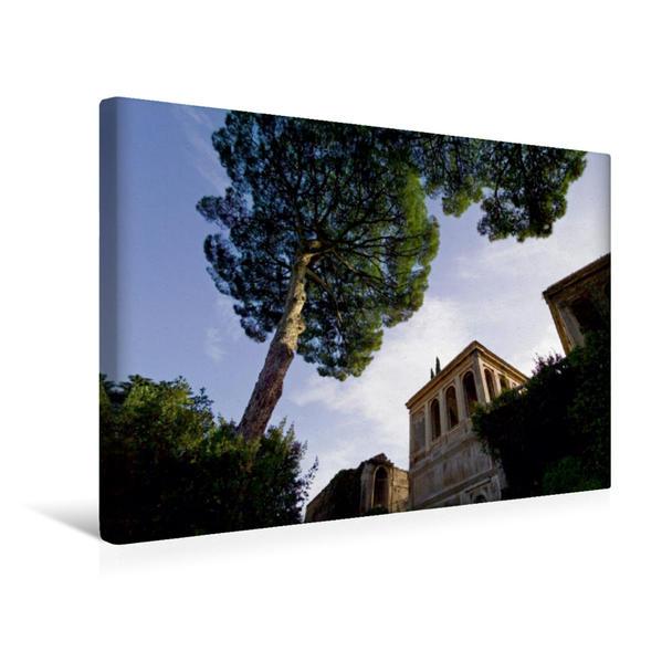 Premium Textil-Leinwand 45 cm x 30 cm quer, Pinien am Palatinischen Hügel, im Hintergrund die Uccelliera Farnese | Wandbild, Bild auf Keilrahmen, Fertigbild auf echter Leinwand, Leinwanddruck - Coverbild