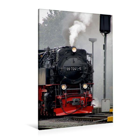 Premium Textil-Leinwand 80 cm x 120 cm  hoch, Unter Dampf | Wandbild, Bild auf Keilrahmen, Fertigbild auf echter Leinwand, Leinwanddruck - Coverbild