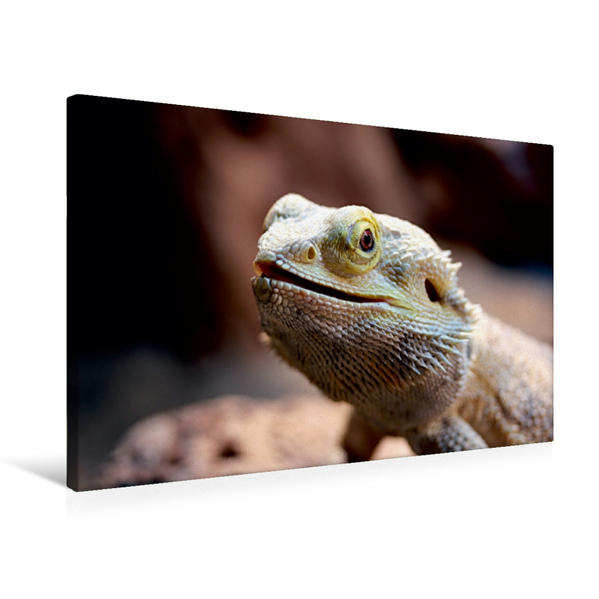 Premium Textil-Leinwand 75 cm x 50 cm quer, Hallöchin | Wandbild, Bild auf Keilrahmen, Fertigbild auf echter Leinwand, Leinwanddruck - Coverbild