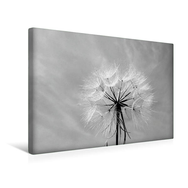 Premium Textil-Leinwand 45 cm x 30 cm quer, Abschied | Wandbild, Bild auf Keilrahmen, Fertigbild auf echter Leinwand, Leinwanddruck - Coverbild