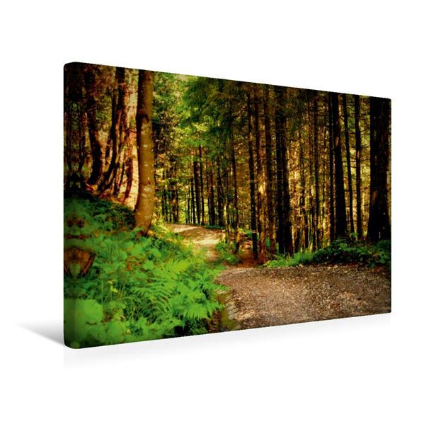 Premium Textil-Leinwand 45 cm x 30 cm quer, Waldweg   Wandbild, Bild auf Keilrahmen, Fertigbild auf echter Leinwand, Leinwanddruck - Coverbild