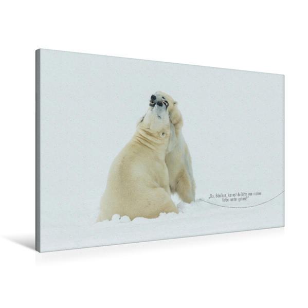 Premium Textil-Leinwand 90 cm x 60 cm quer, Ein Motiv aus dem Kalender Emotionale Momente: Eisbären - ganz menschlich gesehen. | Wandbild, Bild auf Keilrahmen, Fertigbild auf echter Leinwand, Leinwanddruck - Coverbild