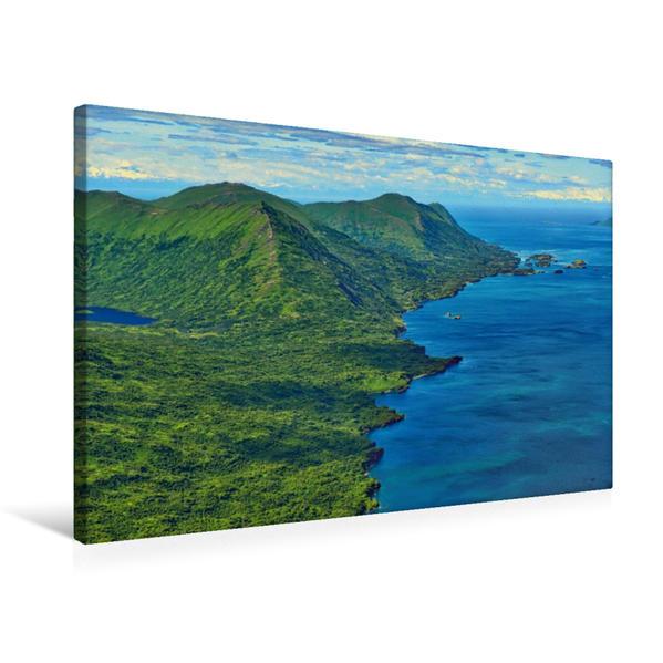 Premium Textil-Leinwand 75 cm x 50 cm quer, Junger Weißkopfseeadler | Wandbild, Bild auf Keilrahmen, Fertigbild auf echter Leinwand, Leinwanddruck - Coverbild