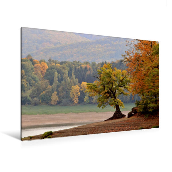 Premium Textil-Leinwand 120 cm x 80 cm quer, Herbst am Schiefen Baum | Wandbild, Bild auf Keilrahmen, Fertigbild auf echter Leinwand, Leinwanddruck - Coverbild