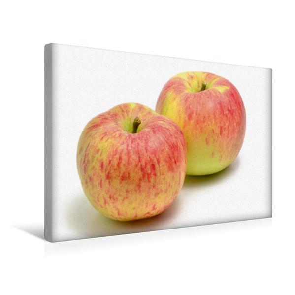 Premium Textil-Leinwand 45 cm x 30 cm quer, Äpfel | Wandbild, Bild auf Keilrahmen, Fertigbild auf echter Leinwand, Leinwanddruck - Coverbild