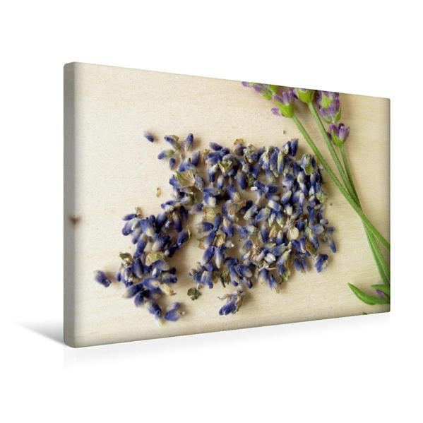 Premium Textil-Leinwand 45 cm x 30 cm quer, Getrocknete Lavendelblüten   Wandbild, Bild auf Keilrahmen, Fertigbild auf echter Leinwand, Leinwanddruck - Coverbild