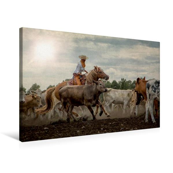 Premium Textil-Leinwand 75 cm x 50 cm quer, Ein Motiv aus dem Kalender Mecklenburgs Wilder Westen | Wandbild, Bild auf Keilrahmen, Fertigbild auf echter Leinwand, Leinwanddruck - Coverbild