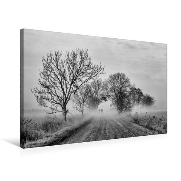 Premium Textil-Leinwand 75 cm x 50 cm quer, Novembernebel | Wandbild, Bild auf Keilrahmen, Fertigbild auf echter Leinwand, Leinwanddruck - Coverbild