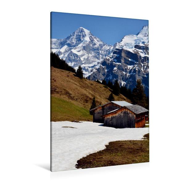 Premium Textil-Leinwand 80 cm x 120 cm  hoch, Frühling im Blumental | Wandbild, Bild auf Keilrahmen, Fertigbild auf echter Leinwand, Leinwanddruck - Coverbild