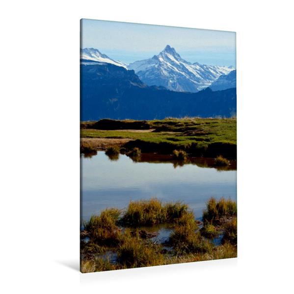Premium Textil-Leinwand 80 cm x 120 cm  hoch, Finsteraarhorn | Wandbild, Bild auf Keilrahmen, Fertigbild auf echter Leinwand, Leinwanddruck - Coverbild