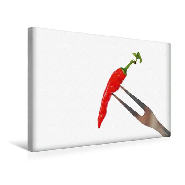 Premium Textil-Leinwand 45 cm x 30 cm quer, Aufgespießte Chili-Schote   Wandbild, Bild auf Keilrahmen, Fertigbild auf echter Leinwand, Leinwanddruck - Coverbild