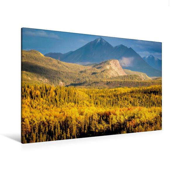 Premium Textil-Leinwand 120 cm x 80 cm quer, Herbstfärbung im Denali National Park | Wandbild, Bild auf Keilrahmen, Fertigbild auf echter Leinwand, Leinwanddruck - Coverbild