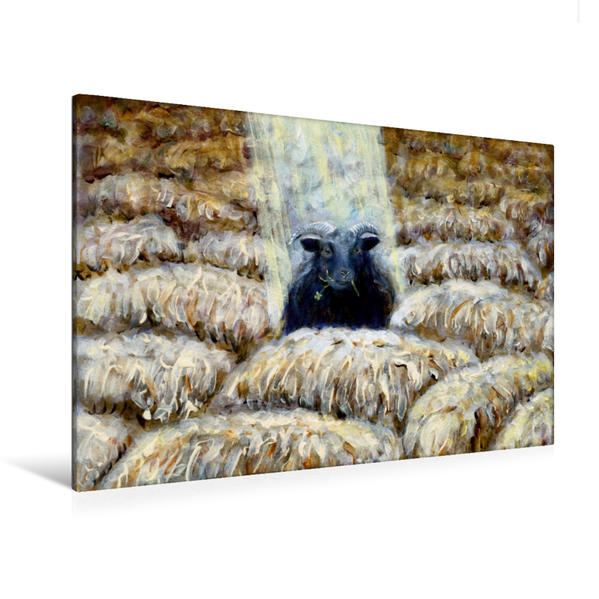 Premium Textil-Leinwand 120 cm x 80 cm quer, Das schwarze Schaf sein | Wandbild, Bild auf Keilrahmen, Fertigbild auf echter Leinwand, Leinwanddruck - Coverbild
