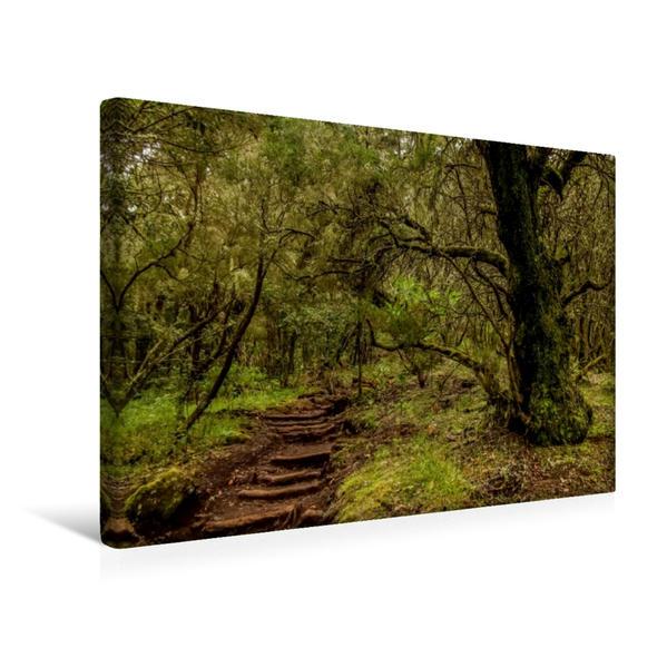 Premium Textil-Leinwand 45 cm x 30 cm quer, Entdeckungsreise La Gomera: Nationalpark Garajonay | Wandbild, Bild auf Keilrahmen, Fertigbild auf echter Leinwand, Leinwanddruck - Coverbild