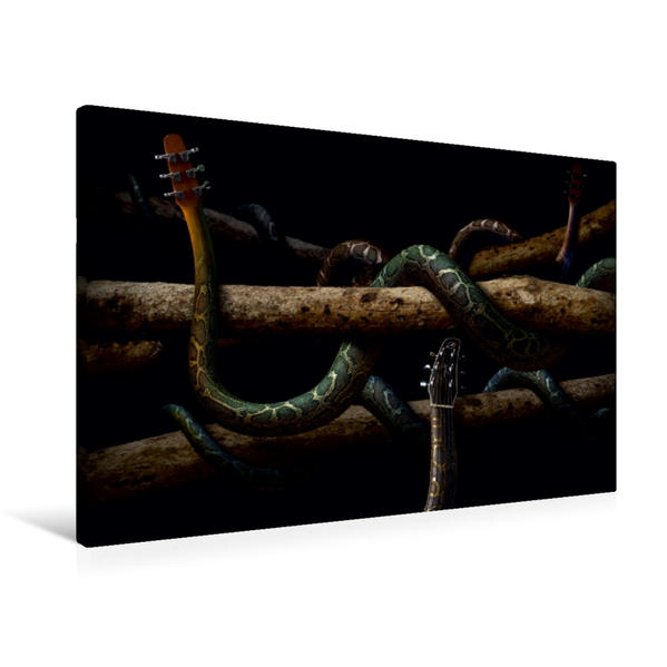 Premium Textil-Leinwand 90 cm x 60 cm quer, Guitarra Anaconda | Wandbild, Bild auf Keilrahmen, Fertigbild auf echter Leinwand, Leinwanddruck - Coverbild