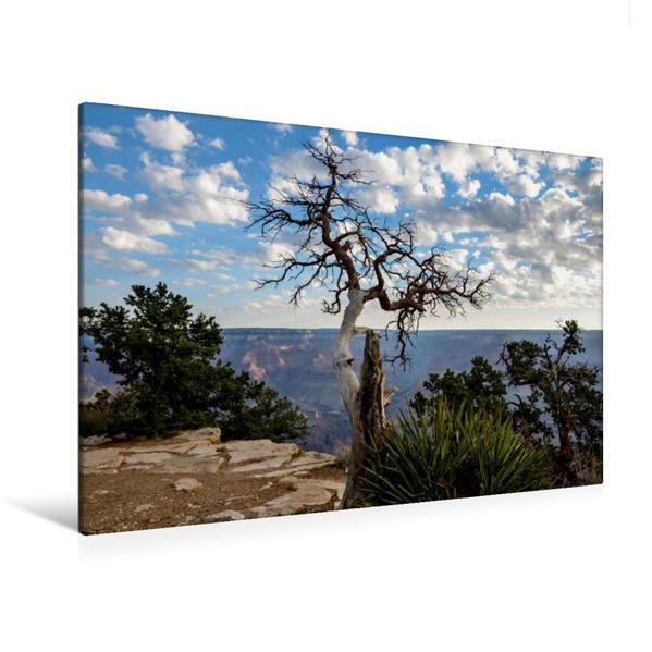 Premium Textil-Leinwand 120 cm x 80 cm quer, South Rim - Grand Canyon, Arizona | Wandbild, Bild auf Keilrahmen, Fertigbild auf echter Leinwand, Leinwanddruck - Coverbild