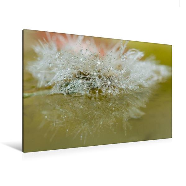 Premium Textil-Leinwand 120 cm x 80 cm quer, Pusteblume - Magische Spiegelung | Wandbild, Bild auf Keilrahmen, Fertigbild auf echter Leinwand, Leinwanddruck - Coverbild