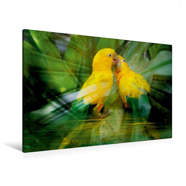 Premium Textil-Leinwand 120 cm x 80 cm quer, Amazonen Papagei   Wandbild, Bild auf Keilrahmen, Fertigbild auf echter Leinwand, Leinwanddruck - Coverbild