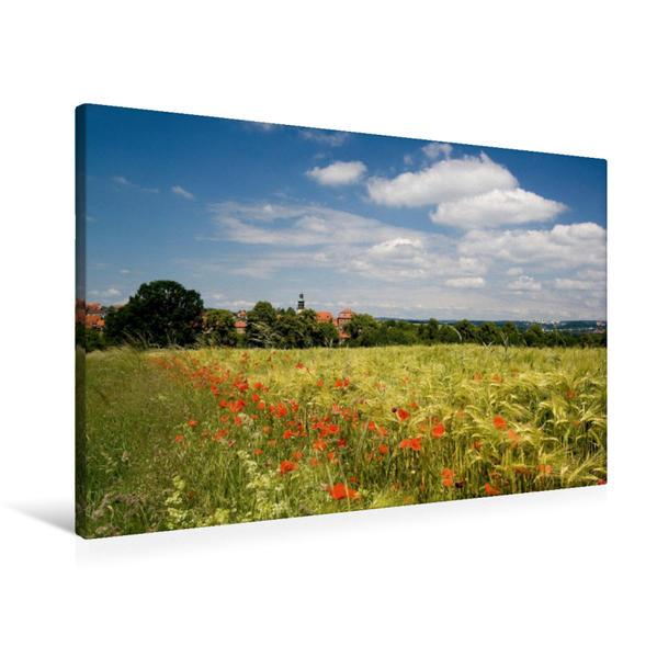 Premium Textil-Leinwand 90 cm x 60 cm quer, Mohnblüte in Johannesberg bei Fulda | Wandbild, Bild auf Keilrahmen, Fertigbild auf echter Leinwand, Leinwanddruck - Coverbild