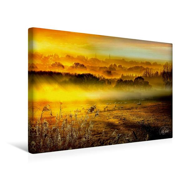 Premium Textil-Leinwand 45 cm x 30 cm quer, Schafe auf der Weide im Sonnenaufgang | Wandbild, Bild auf Keilrahmen, Fertigbild auf echter Leinwand, Leinwanddruck - Coverbild